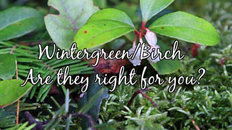 Fun Fact Friday – Wintergreen Essential Oil Safety