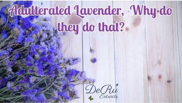 Fun Fact Friday – Adulterated Lavender, Why do they do that?