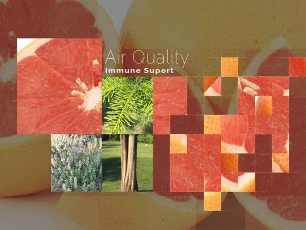 Air Quality by DeRu Extracts