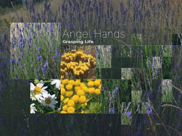 Angel Hands by DeRu Extracts