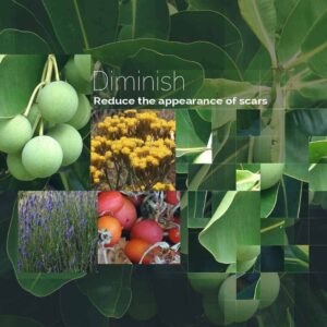 Diminish by DeRu Extracts
