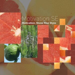 Motivation SE Stone Rise Style by DeRu Extracts