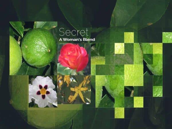 Secret by DeRu Extracts